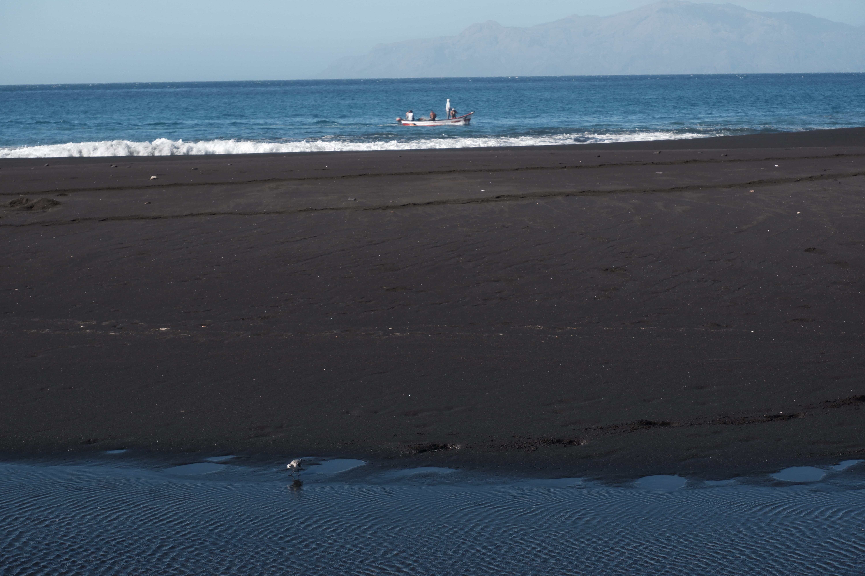 Biodiversität auf Fonti Bila Strand auf Fogo Insel.